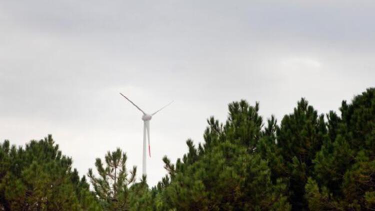Tüm elektrik ihtiyacını rüzgardan karşılayacak