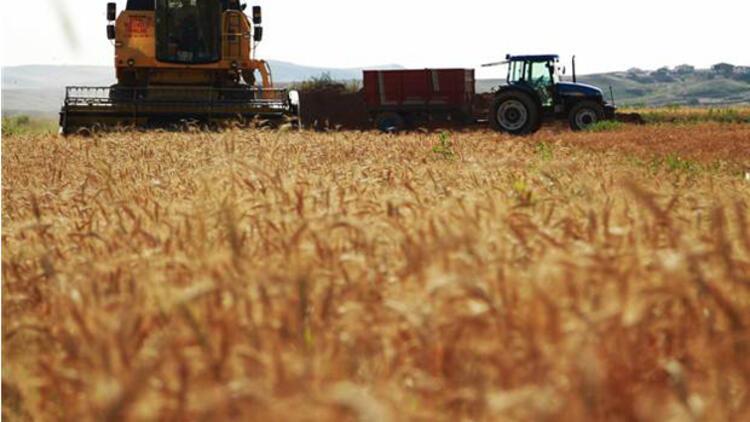 Tarımsal yatırım projelerine yüzde 50 hibe desteği