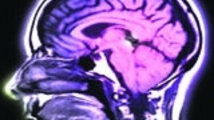 Beynin şifresini çözdük iddiası
