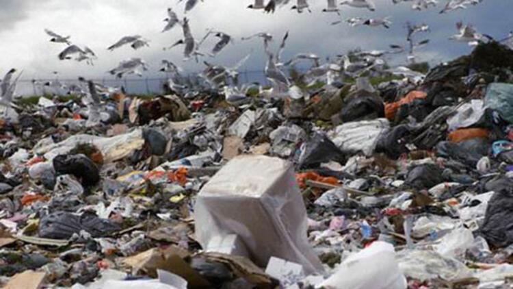 İsveç enerji için çöp ithal ediyor