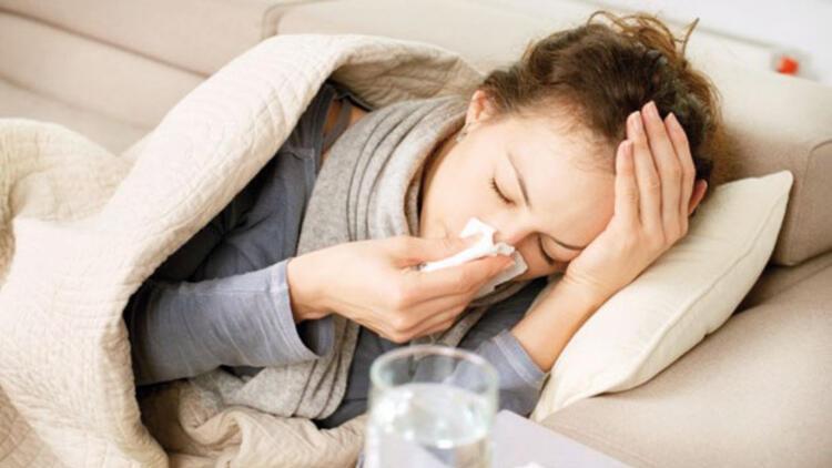 Domuz değil normal grip