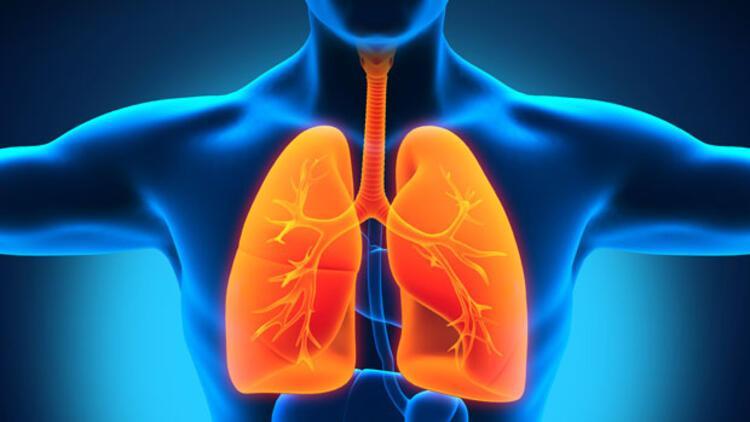Düz paket sigara tüketimini ve cazibesini azaltıyor