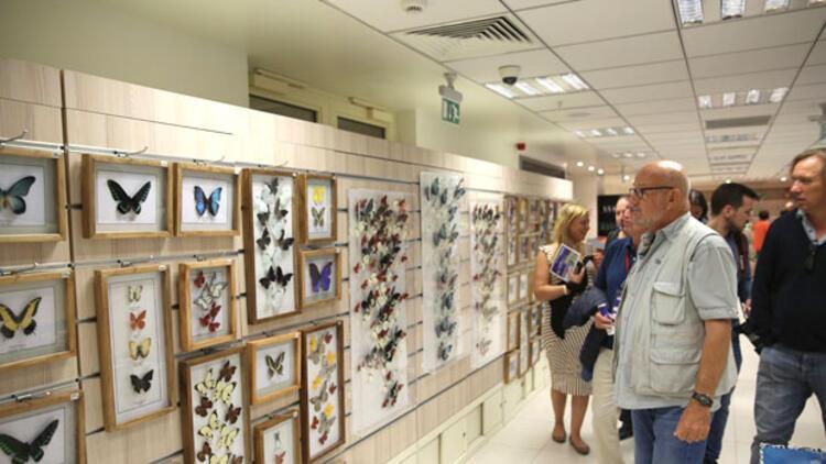 Alman gazeteciler, Kelebekler Bahçesi'ne hayran kaldı