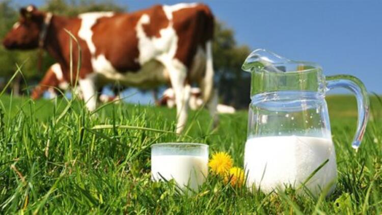 Toplanan inek sütü miktarı nisanda azaldı