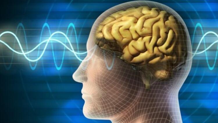 Temporal Lob Epilepsi hastalığı nedir? TLE hastalığının temel özellikleri neler?