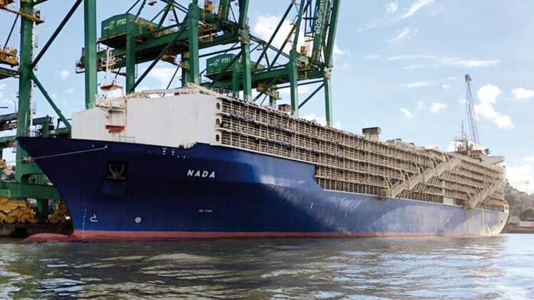 25 bin hayvanı gemiyle Türkiye'ye getiriyorlar! Eylemler yapıldı, dava açıldı