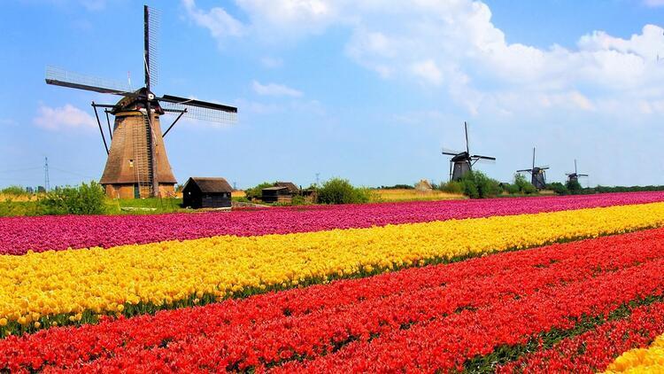 Hollanda'da bahar rotası