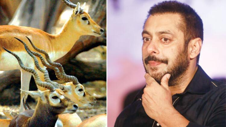 Bollywood 'avcısına' hapis cezası
