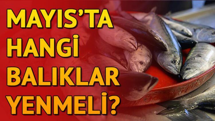 Mayıs'ta hangi balıklar yenir? Hangi ayda hangi balık tercih edilmeli?