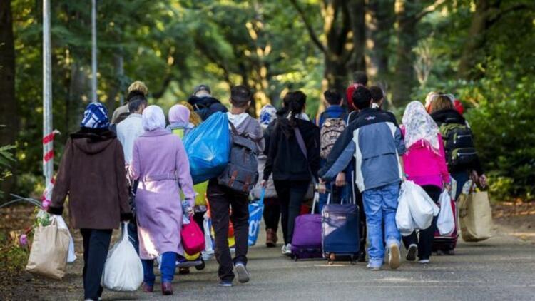 Hollanda'da mültecilere tuvalet temizleme zorunluluğu