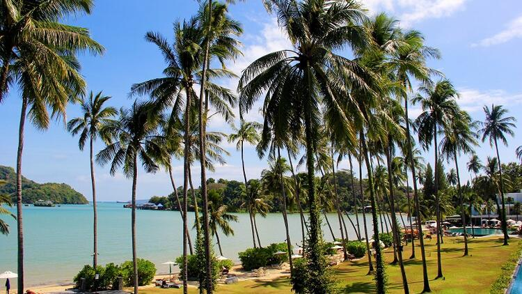 Phuket:Tayland'ın süper starı