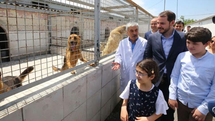 Berat Albayrak: Hayvan haklarıyla ilgili tasarının takipçisi olacağız