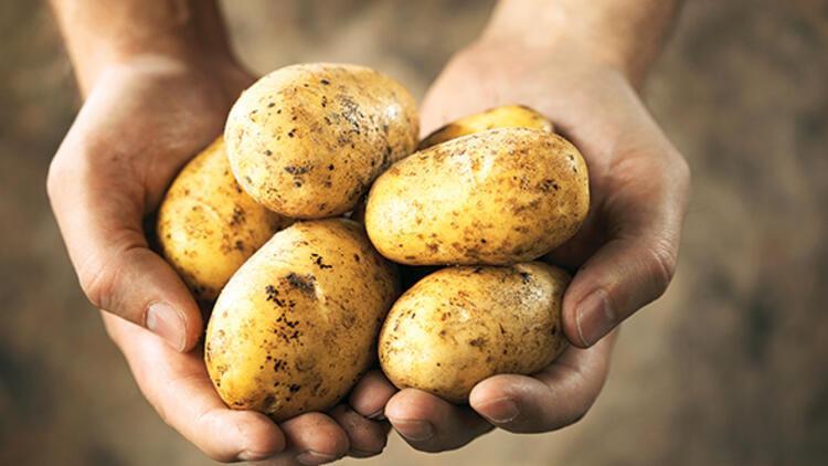 Patates fiyatlarına 'hassas' takip