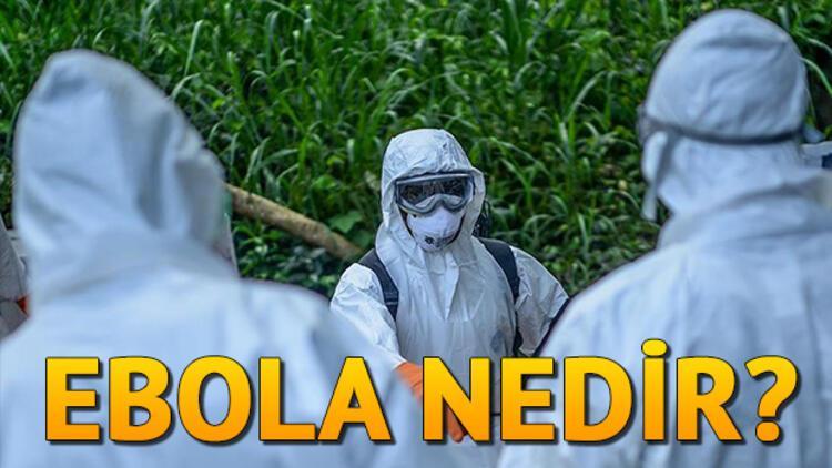 Ebola nedir? Ebola belirtileri neler?