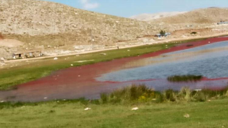 Kırmızıya dönen göl şaşırttı