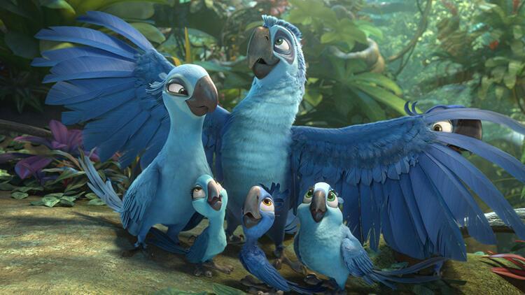 8 kuş türünün soyu tükendi