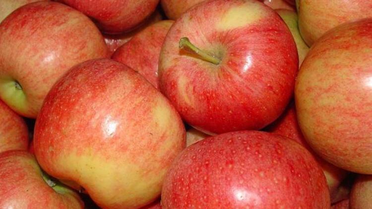 Avustralya'da çilek ve muzdan sonra elmadan da iğne çıktı