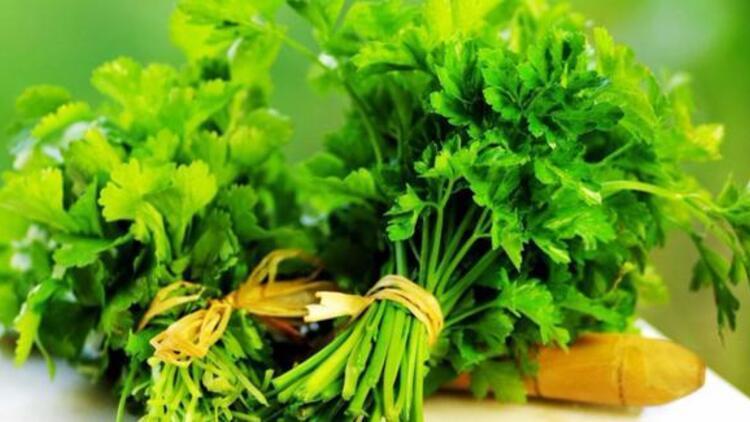 Adet söktürücü besinler ve bitkiler neler?