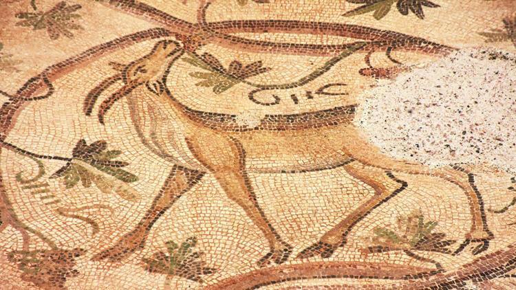 1500 yıllık mozaik ziyarete açıldı