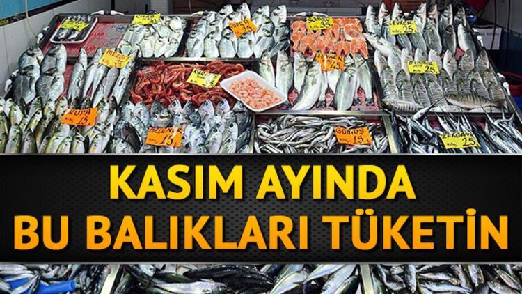 Kasım'da hangi balıklar yenir? Kasım'da yenilmesi gereken balıklar