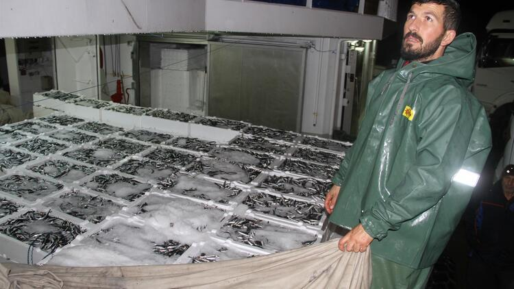 Akçakoca kıyılarında hamsi bereketi