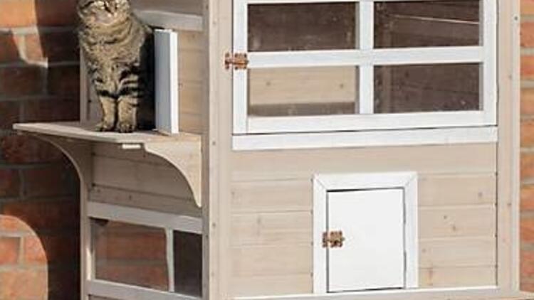 Kedilerin kış aylarında soğuktan korunabilmesi için yapılmış barınaklara ne ad verilir