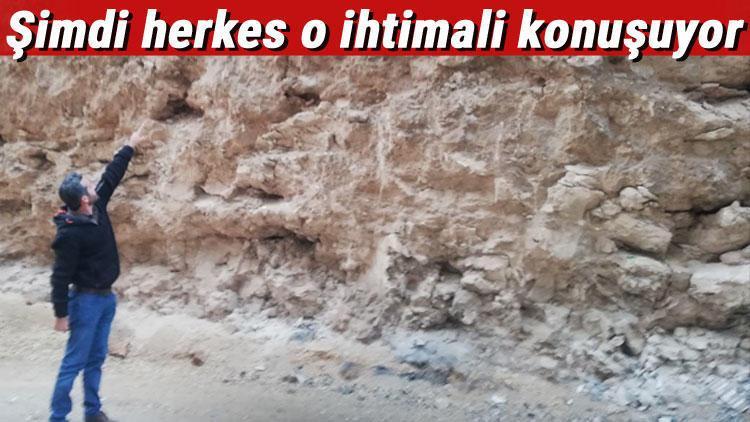 Mardin'de dinozor fosili iddiası heyecan yarattı