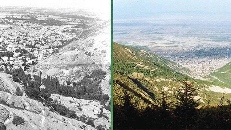 Tekke köyünün 3 güzel dedesi ömürlerini verip kıraç tepeleri orman yaptı