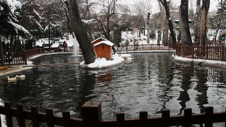 Ankara'nın nostaljik adresi: Kuğulu Park