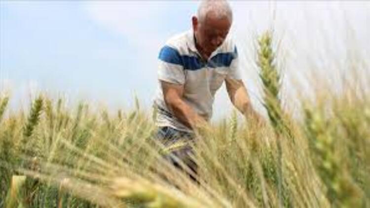 Çiftlik danışmanlarına yeni düzenleme