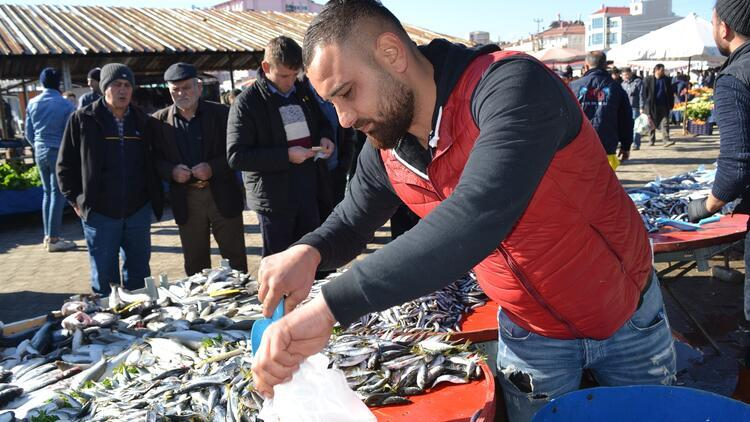 Karadeniz hamsisine yoğun ilgi