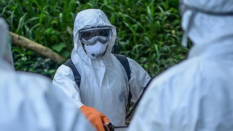 Ebola virüsü nedir? Ebola virüsü belirtileri