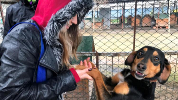 'Hayvan Hakları' MYO'da ders oldu