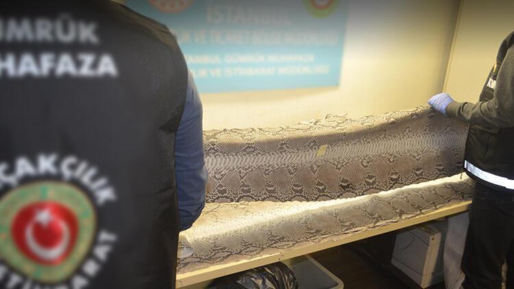 Atatürk Havalimanı'nda ekipler şüphelenince ortaya çıktı! Nadir bulunanlar listesinde