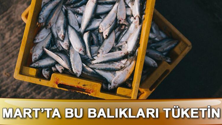 Mart'ta hangi balıklar yenir? Mart ayında yenilmesi gereken balıklar