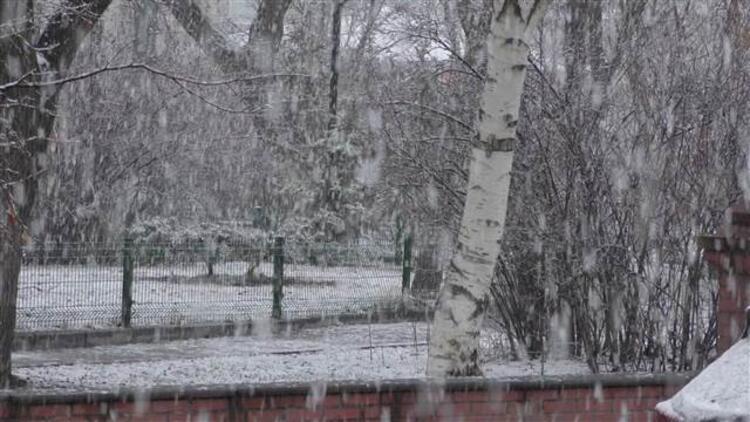 Ardahan'a lapa lapa kar yağdı