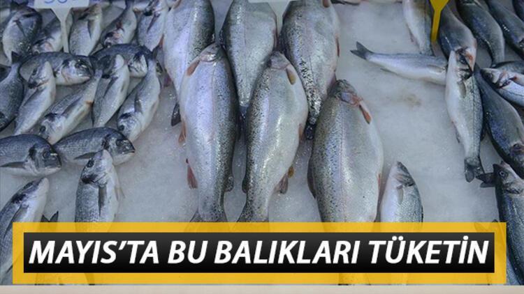 Mayıs'ta yenilmesi gereken balıklar neler? Mayıs ayında hangi balıklar yenir?