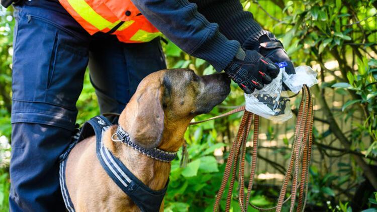 Polis köpeği yüzünü ısırmıştı! Tazminatı belli oldu