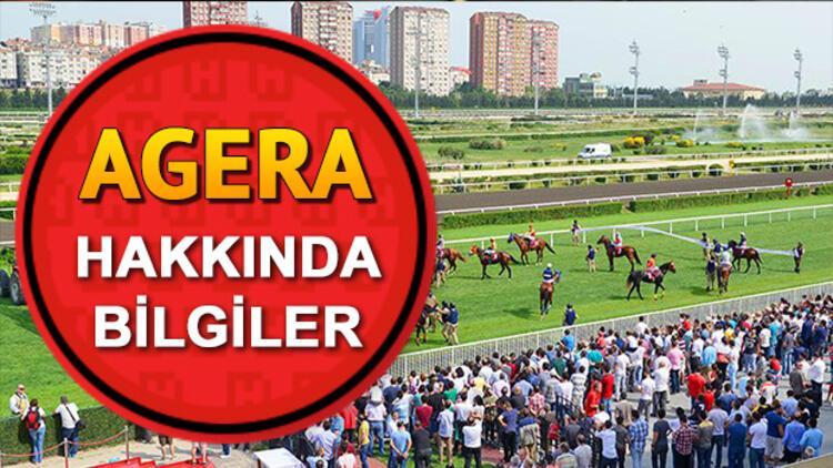 Gazi Koşusu adaylarından Agera'nın biyografisi ve sahibi hakkında bazı bilgiler