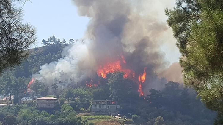 Son dakika... Manavgat'ta orman yangını