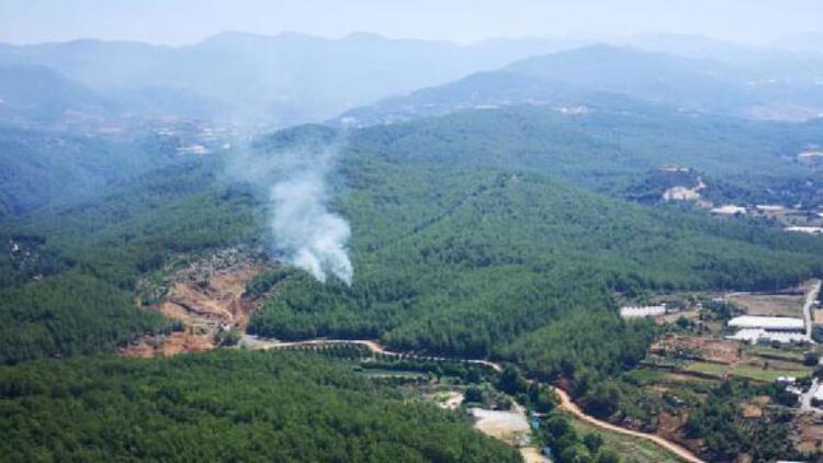 Son dakika... Alanya'da orman yangını
