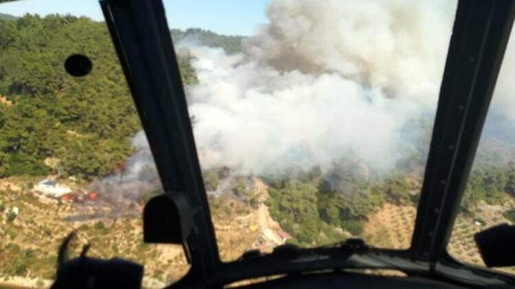 İzmir'de ormanlık ve makilik alanda yangın