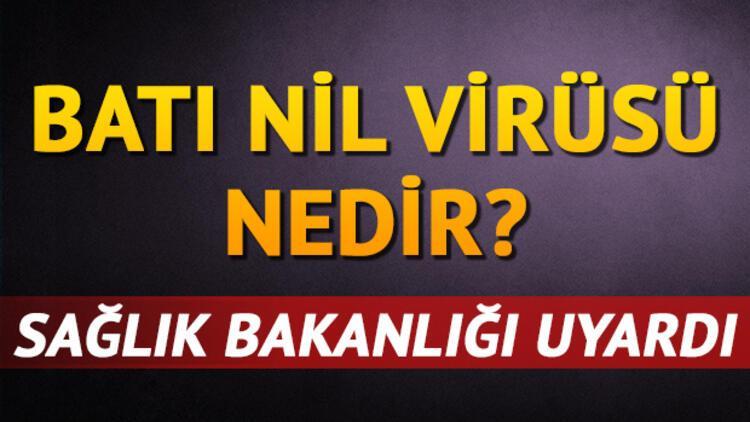 Batı Nil Virüsü nedir? Batı Nil Virüsü nasıl bulaşır?