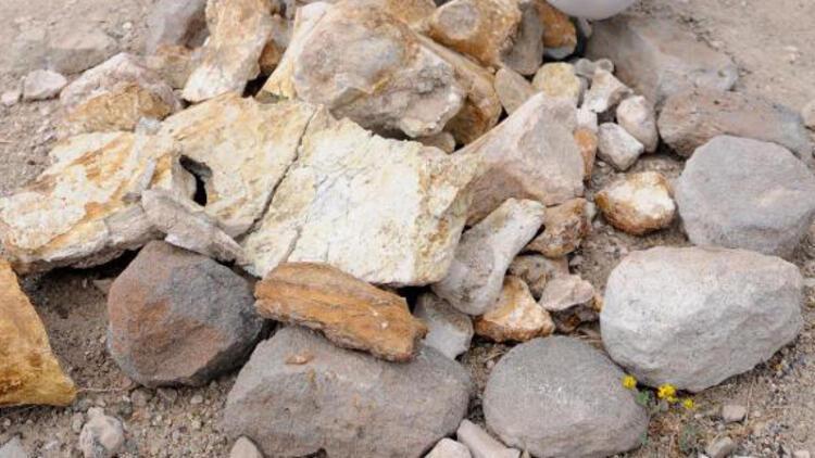Baraj kıyısından 280 fosil çıktı