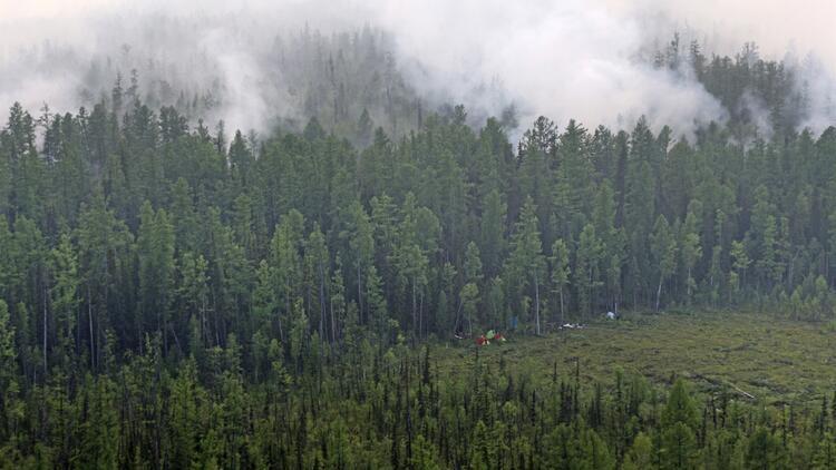 Rusya'nın ormanları yanıyor