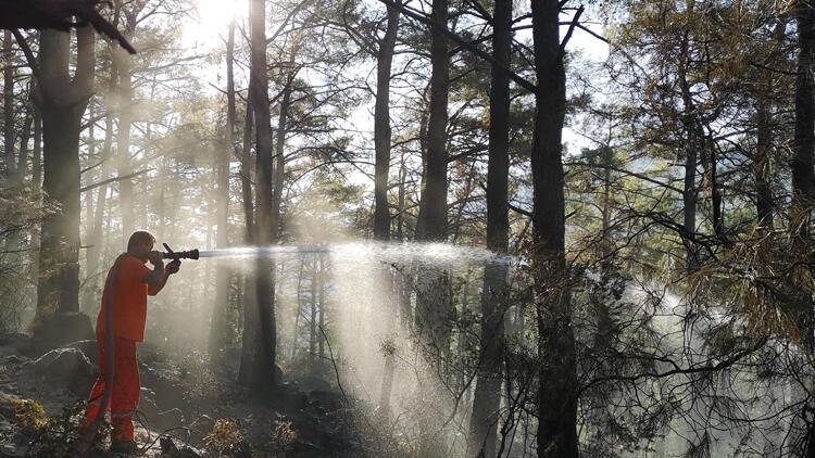 Muğla'daki orman yangınları kısmen kontrol altında