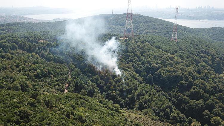 Son dakika... Anadolu Kavağı'nda orman yangını