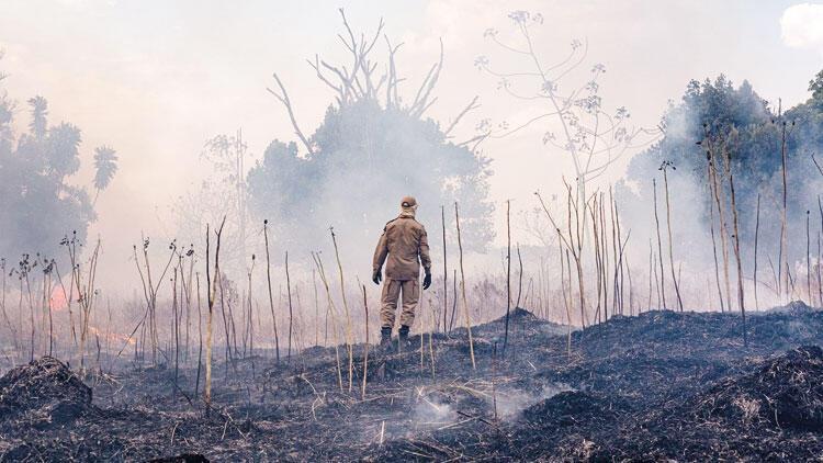 Amazonlar için iki ay anız yakılmasına yasak