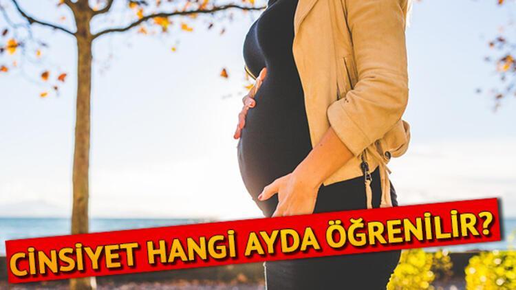 Anne karnındaki bebeğin cinsiyeti ne zaman belli olur? Cinsiyet kaçıncı haftada anlaşılır?