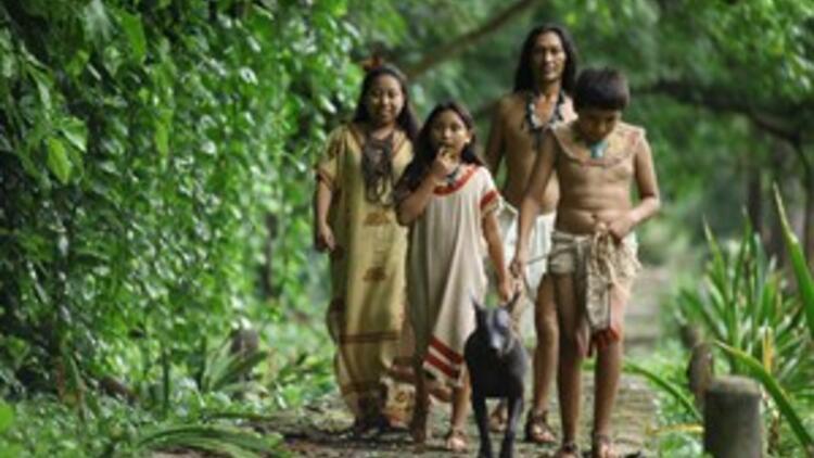 Kimdir bu Mayalar?